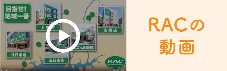 RACの動画