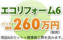 エコリフォーム6 パック価格273万円