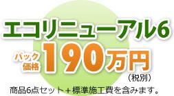 エコリニューアル6 パック価格199万円